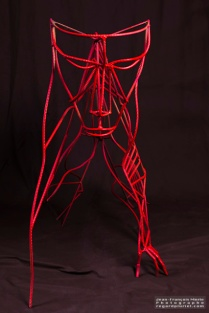 red gardian- sara renaud