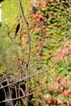 pergola metal vegetal supervolum 2014 (13)